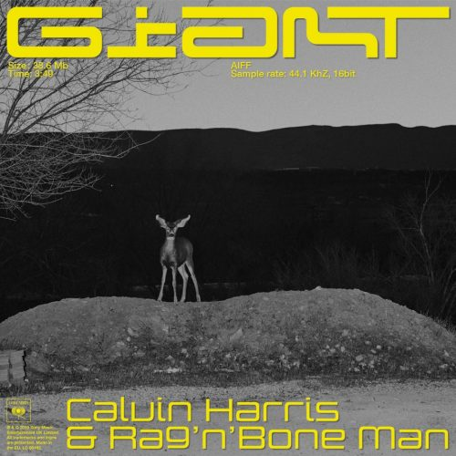 Calvin Harris RagnBone Man - Giant (faith redrum extended remix)